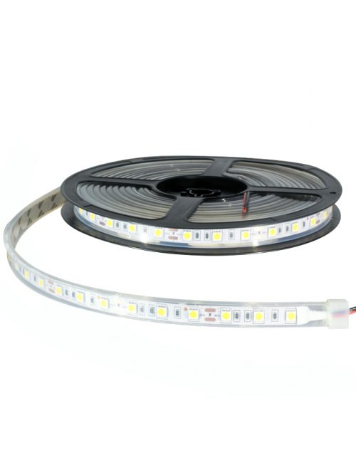 LED Strip Lights & Module